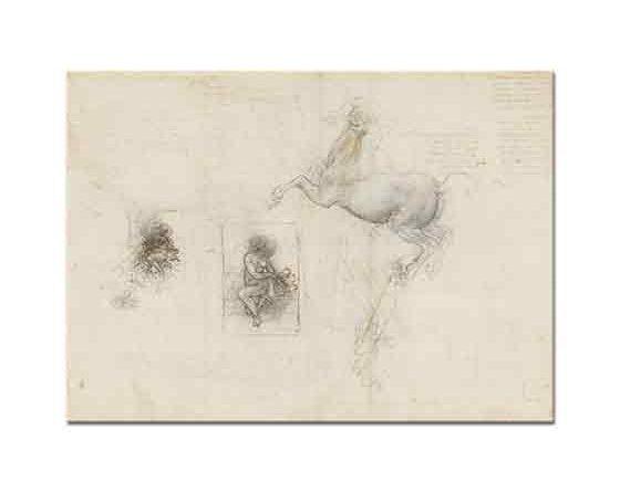 Leonardo Da Vinci At ve Leda Eskizleri