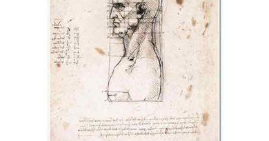 Leonardo Da Vinci Erkek Başının Profil Oranları