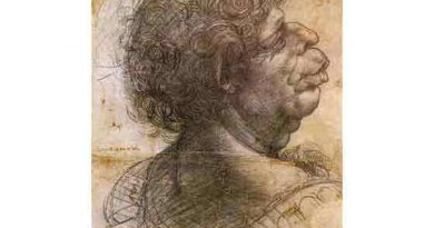 Leonardo Da Vinci Grotesk Kafa
