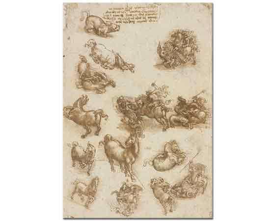 Leonardo Da Vinci Hayvan Eskizleri