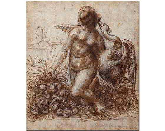Leonardo Da Vinci Leda ve Kuğu Etüdü
