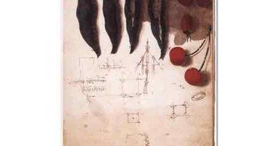 Leonardo Da Vinci Meyve ve Sebze Eskizi