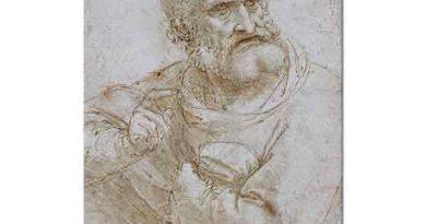Leonardo Da Vinci Yarım Boy Havari Etüdü