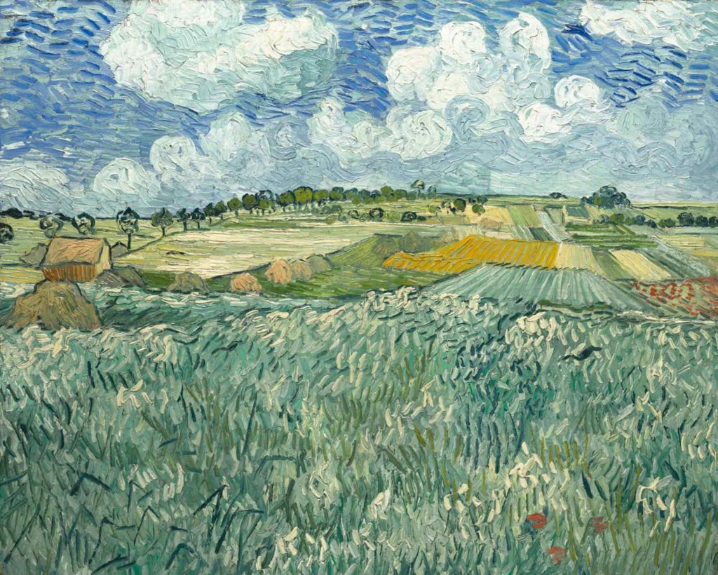 Vincent van Gogh Auvers'te Çayırlık