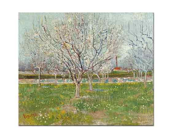 Vincent Willem van Gogh Pembe Meyve Bahçesi