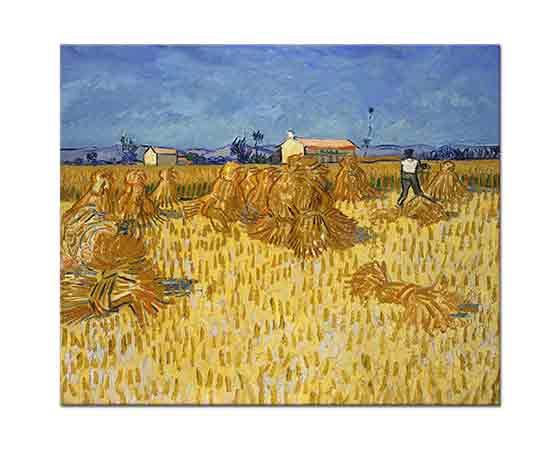 Vincent Willem van Gogh Provence'te Hasat
