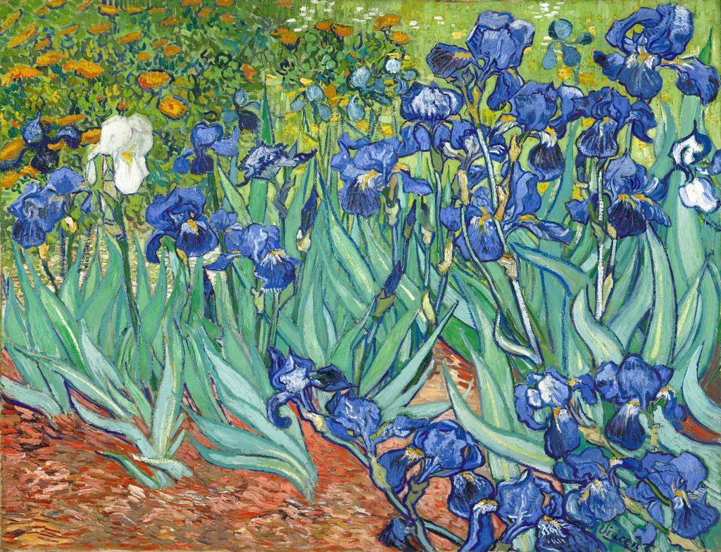 Vincent Willem van Gogh Tarlada Süsenler