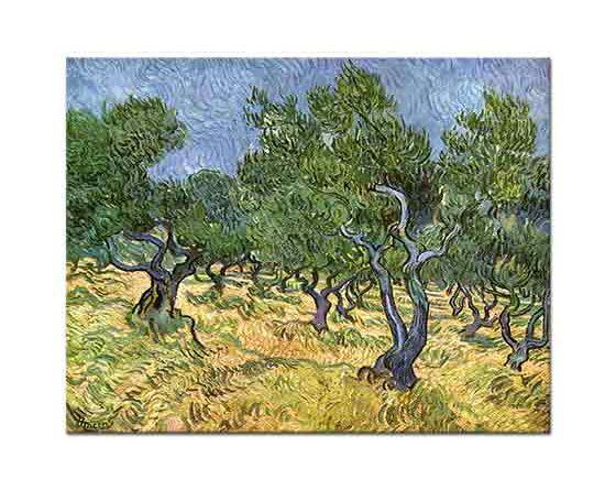 Vincent Willem van Gogh Zeytinlik Manzarası