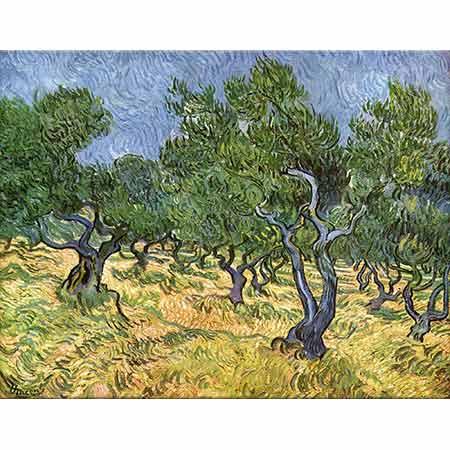 Vincent van Gogh Zeytinlik Manzarası