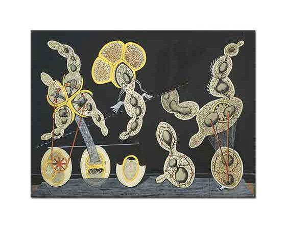 Max Ernst Biyolojik ilişkiler