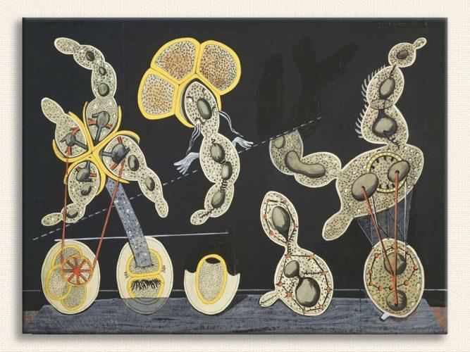 Max Ernst Biyolojik ilişkiler tablosu