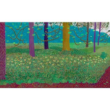David Hockney Bahçede