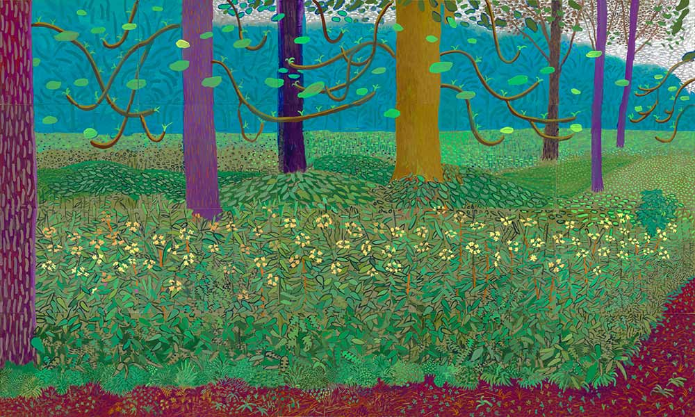 David Hockney Bahçede