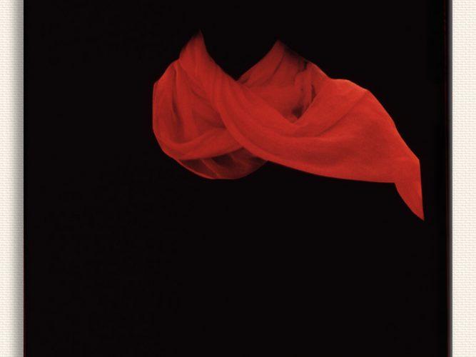 Sara Charlesworth Kırmızı Şal