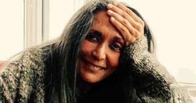 Deepa Mehta, Bir Başkaldırı Sineması