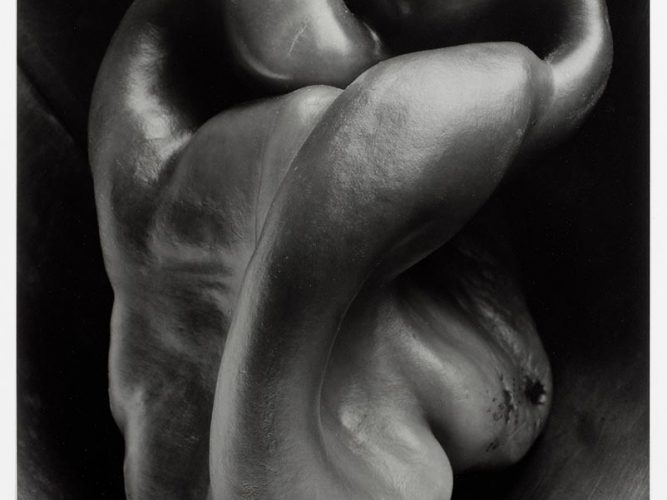 Edward Weston Biber