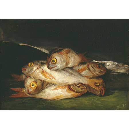 Francisco Goya Altın Çipura