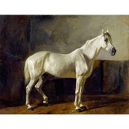 Rudolf Koller Ayakta Duran Beyaz At