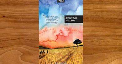 Gael Faye Küçük Ülke Romanıyla İlk Kez Türkçede