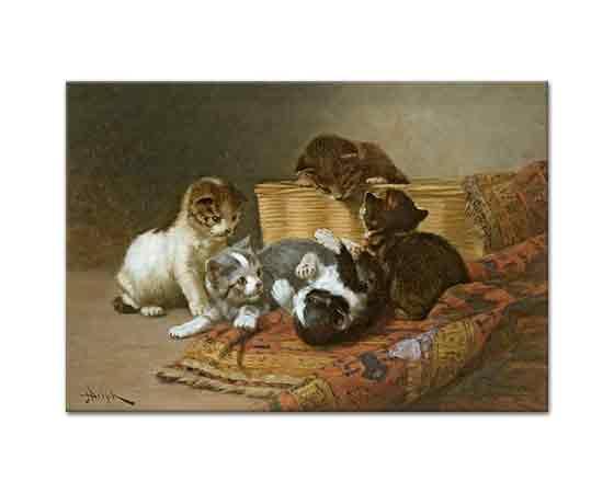 John Henry Dolph Oynayan Kedi Yavruları