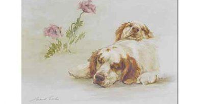 Maud Earl, Uyuklamak Koşturmaktan Daha Tatlıdır