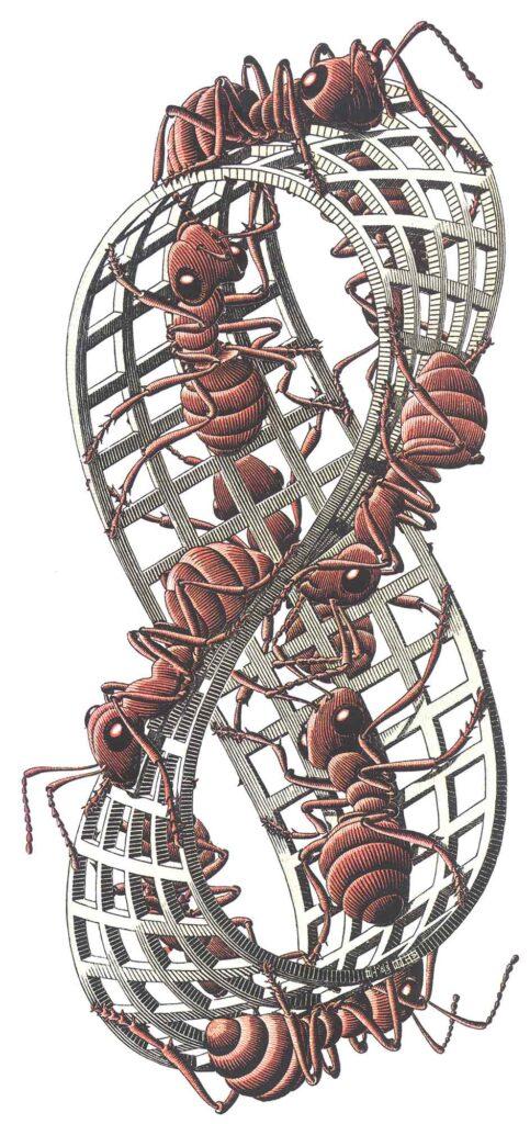 Maurits Cornelis Escher Sonsuzluk II