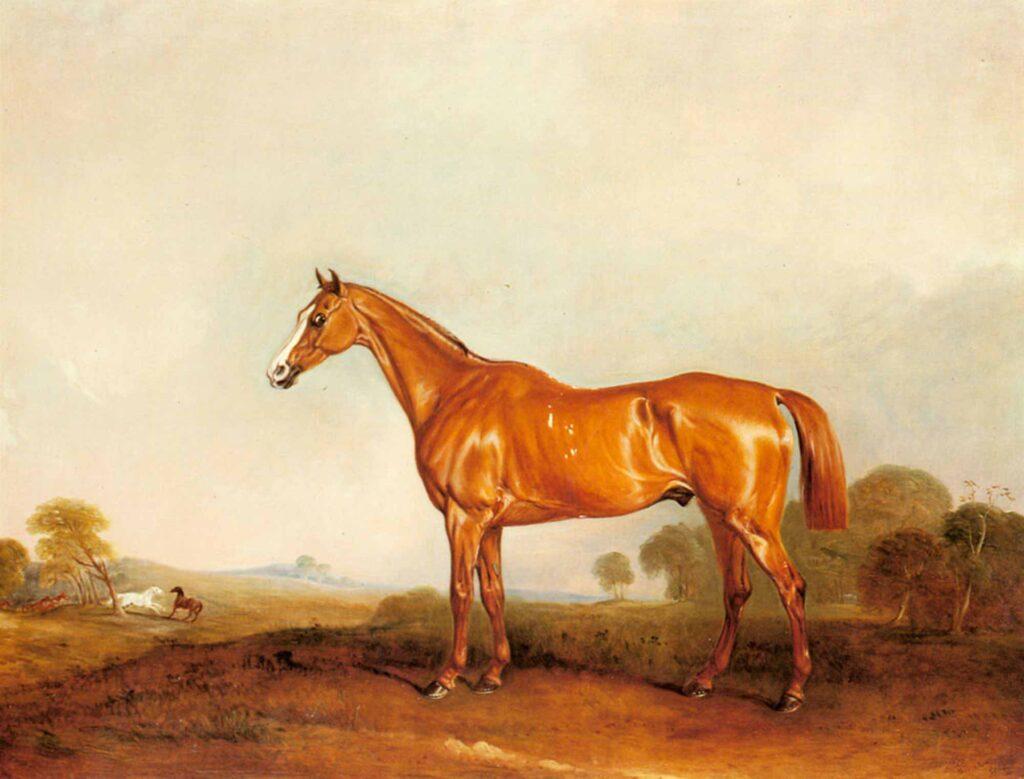 John Ferneley Altın Kestane Renkli Av Atı