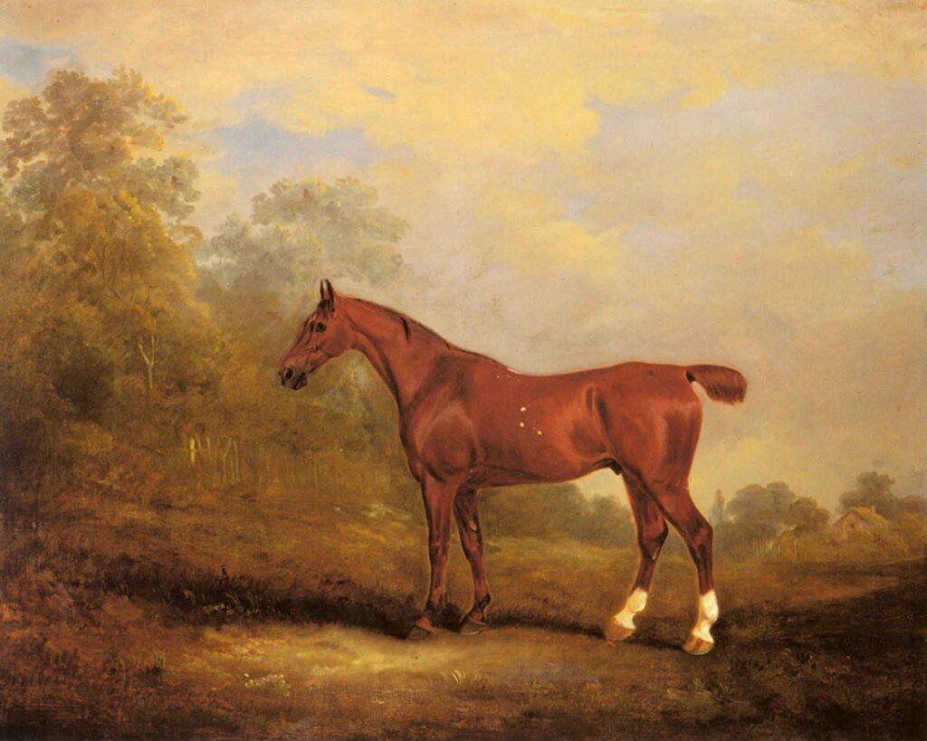 John Ferneley Cecil Gözde Av Atı