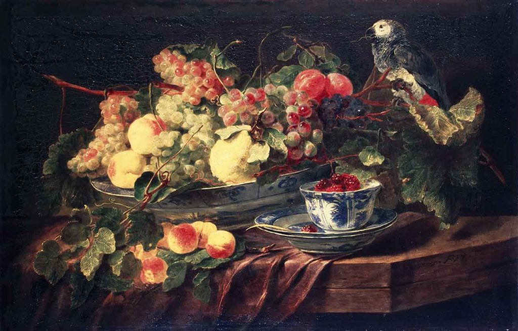 Jan Fyt Meyveler ve Papağan