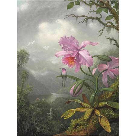 Martin Johnson Heade Orkide Üstüne Tünemiş Sinek Kuşu