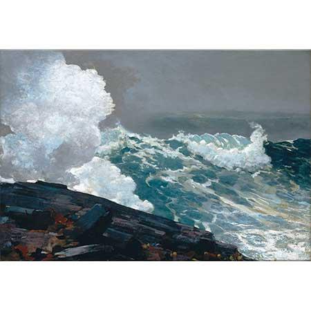 Winslow Homer Poyraz